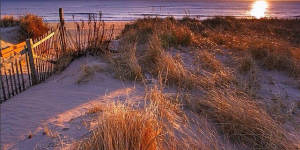 long Island beach sunset
